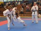 28. April 2018 - 10. SEAT – Zyrull KARATE – Cup in Saarwellingen_4